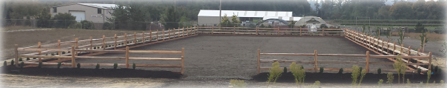 Custom Arena by Marvin's Fencing